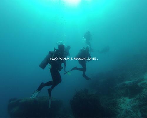 Pulo Manuk & Pramuka Dives