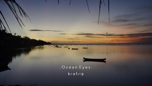 Bali Safari Dives