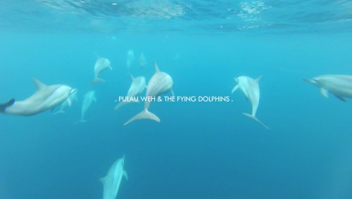 Pulau Weh & The Flying Dolphins